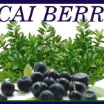 The Health Benefits of Acai Berry