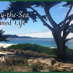 Carmel-by-the-Sea – A Charmed Life On California's Coast