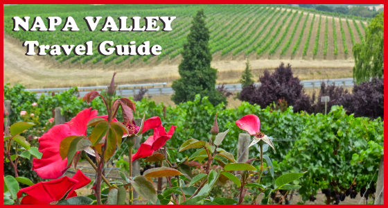 Napa Valley Travel Guide - Summer Edition