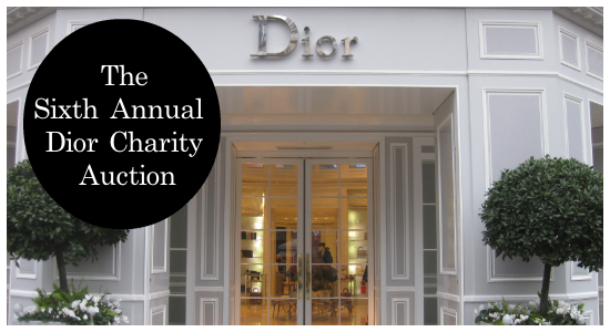 Annual Dior Charity Auction