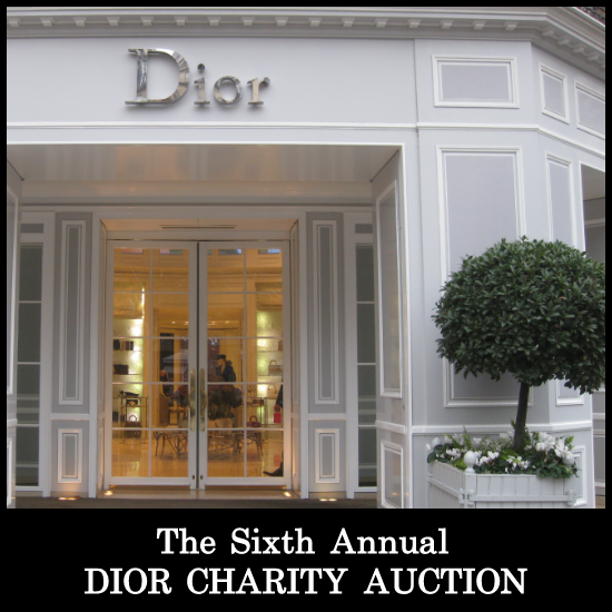 Dior Charity Auction