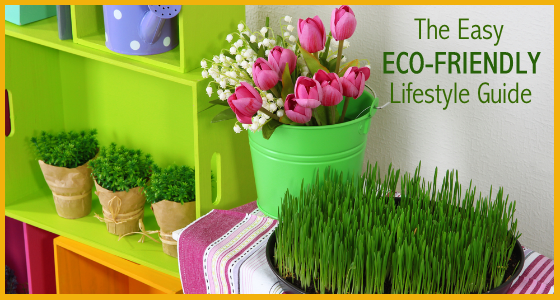 The Easy Eco-Friendly Lifestyle Guide