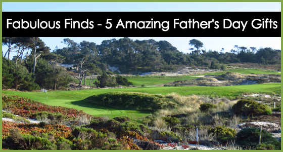Fabulous Finds 5 Amazing Fathers Day Gifts