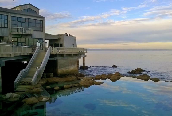 The Ultimate Monterey Bay Vacation Giveaway - Monterey Bay Aquarium