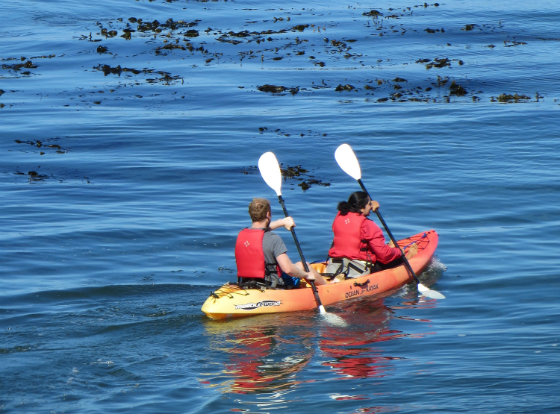 The Ultimate Monterey Bay Vacation Giveaway - Adventures By The Sea Kayaking