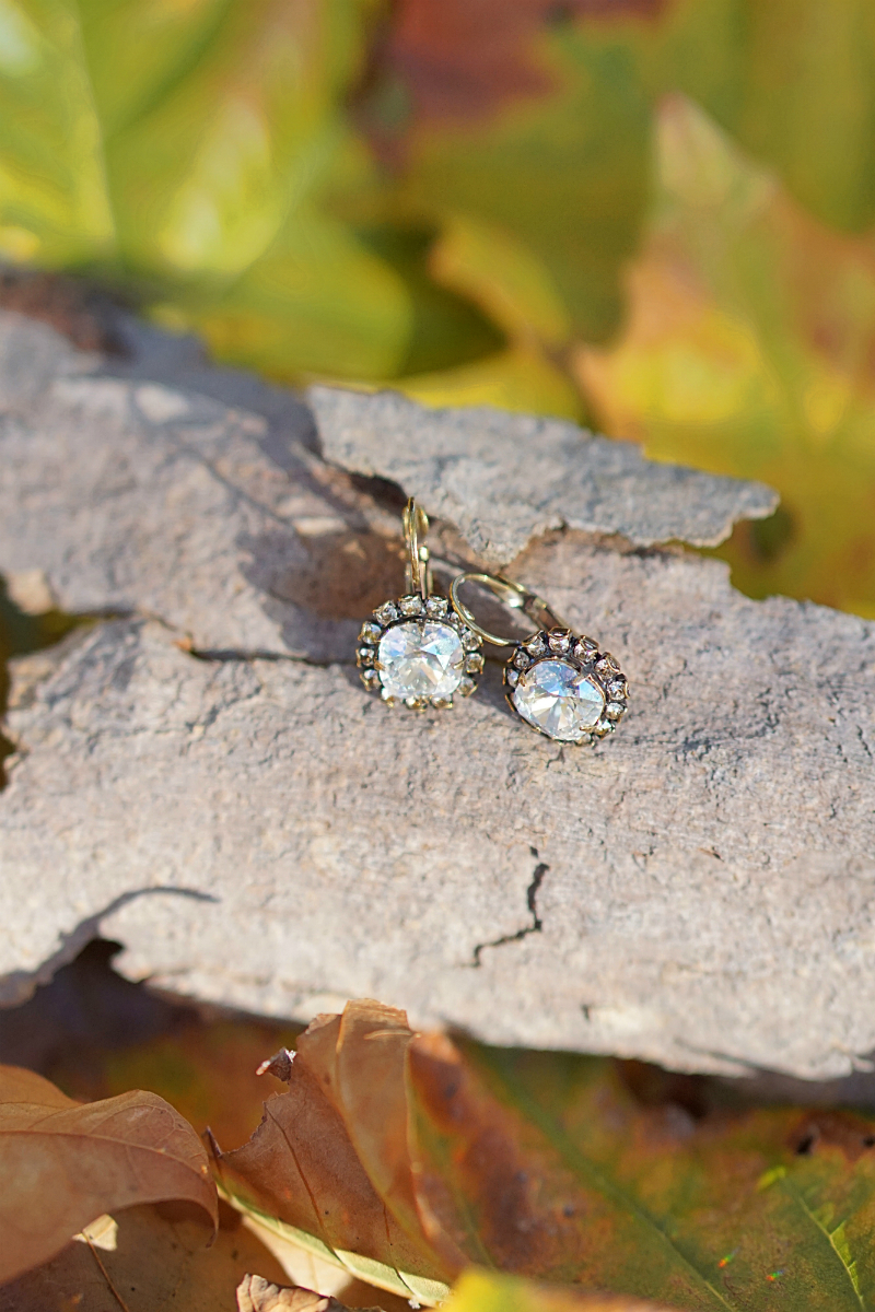 The Fun & Fashionable Fall Giveaway - Papyrus Crystal Earrings