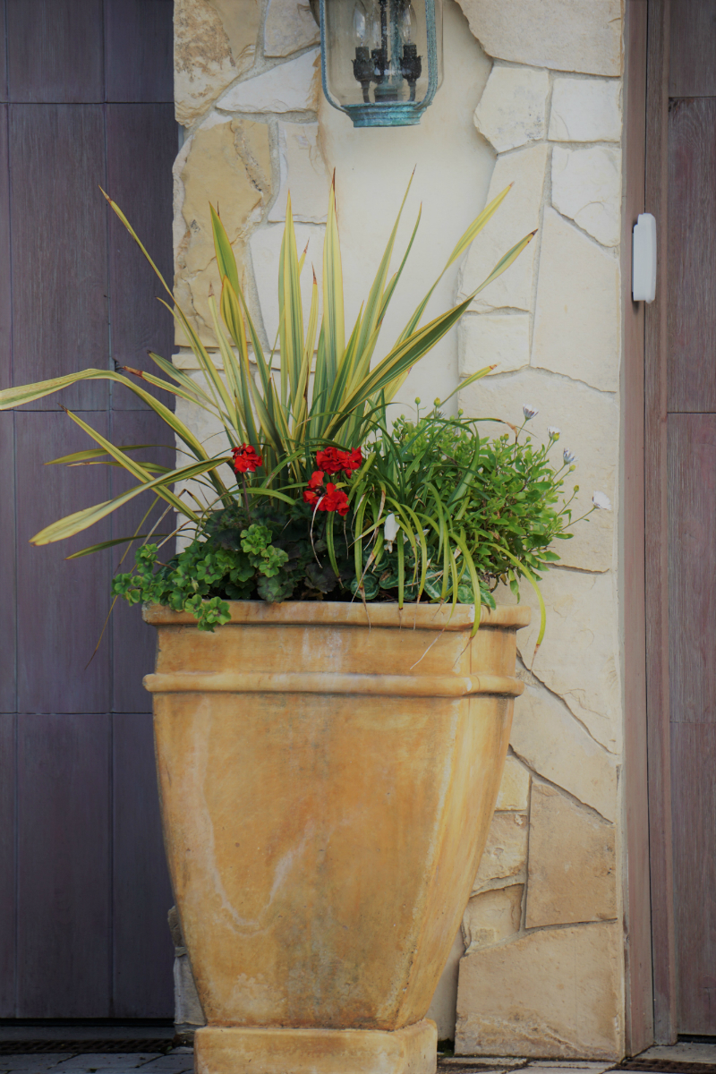 Simple Ways To Refresh Your Home Garden for Spring - Potted Plants