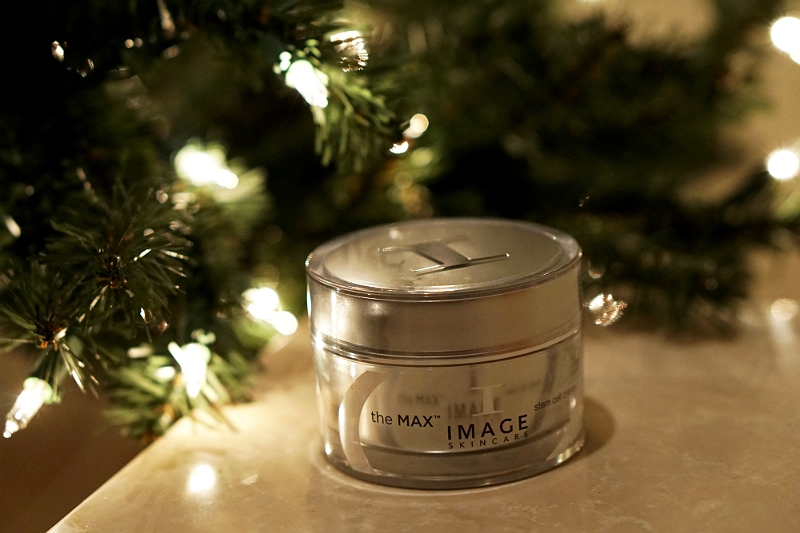 The Elements of Style Holiday Giveaway - Image Skincare