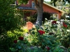 The Deluxe Central Coast Vacation Giveaway - The Barnyard Gardens