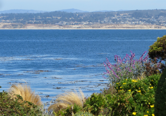 The Ultimate Monterey Bay Vacation Giveaway