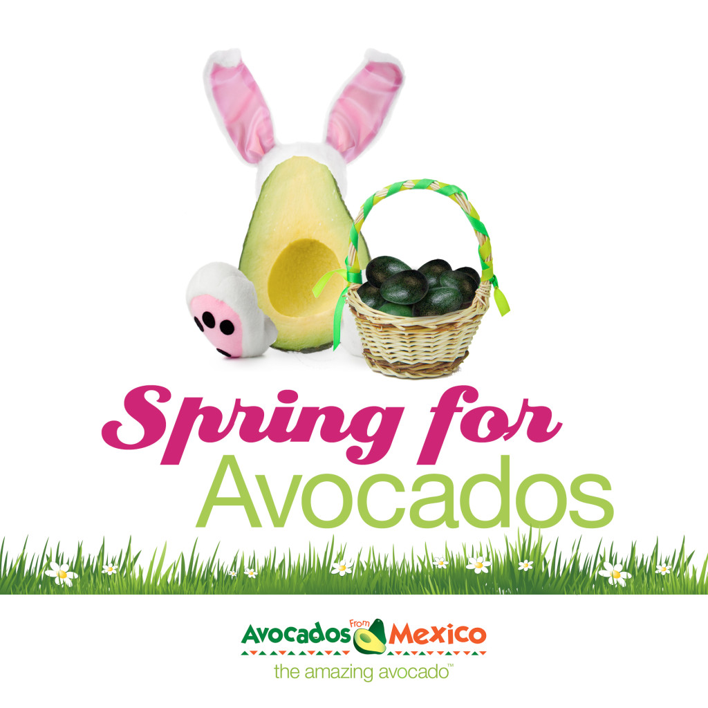 Spring For Avocados
