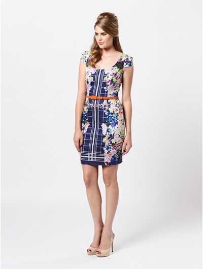 Snap Dragon Dress - Dresses Online from Review Australia