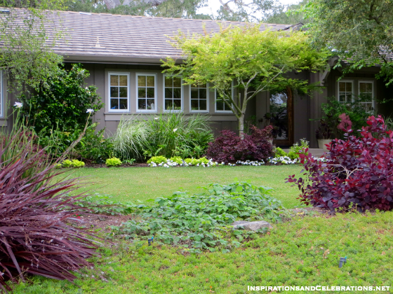 drought tolerant garden. The Californians\u0027 Guide To Drought Tolerant Garden Design