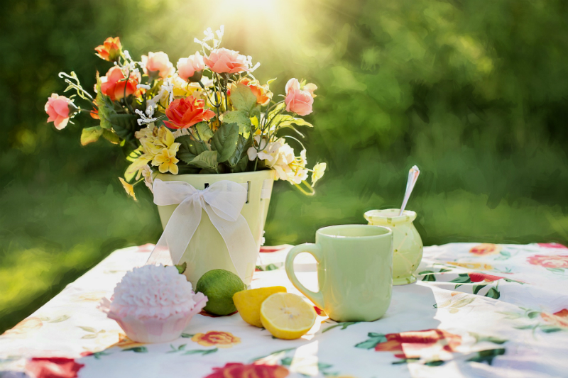 10 Fun Things To Do This Weekend To Make You Happier - Host a Picnic