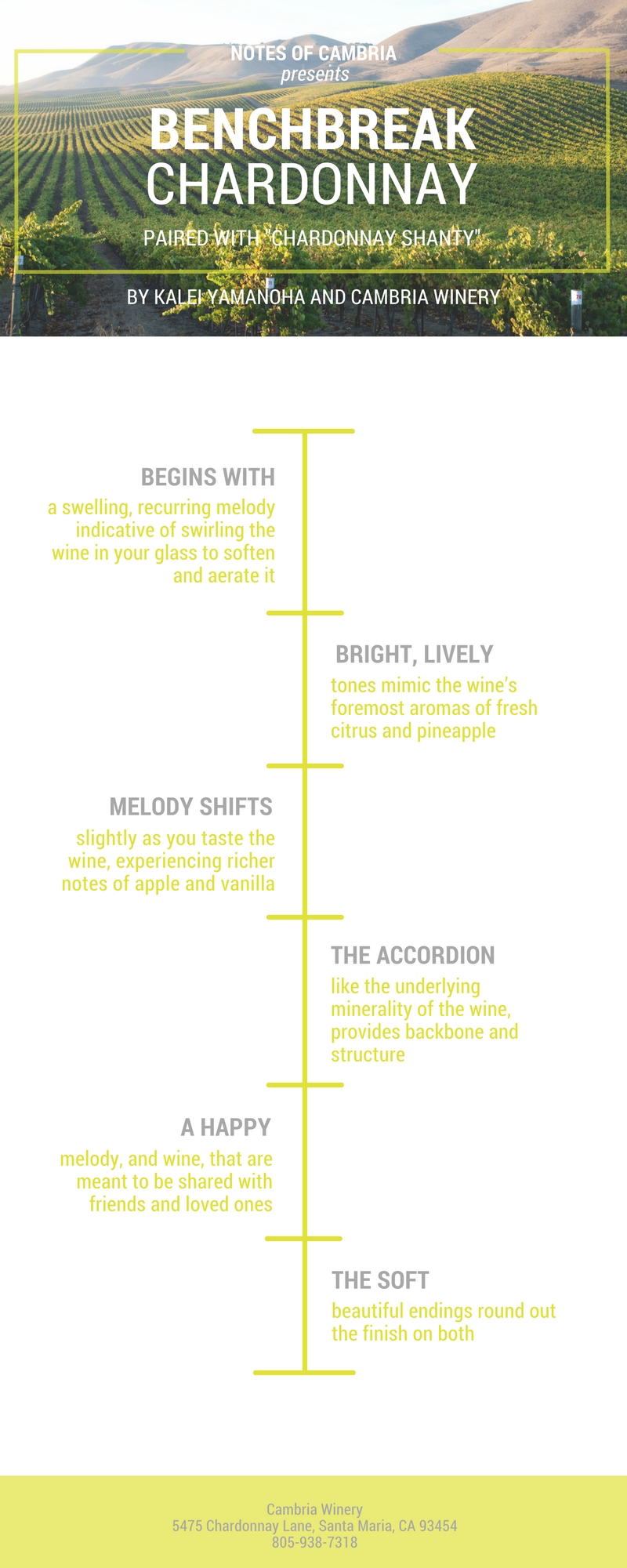 Simple White Wine Timeline - Infographic