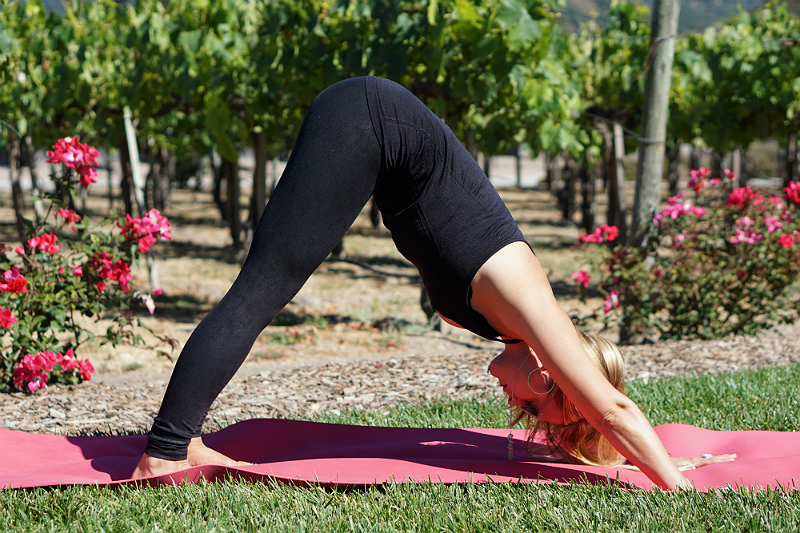 Yoga in the Vines Series - Downward-Facing Dog Pose