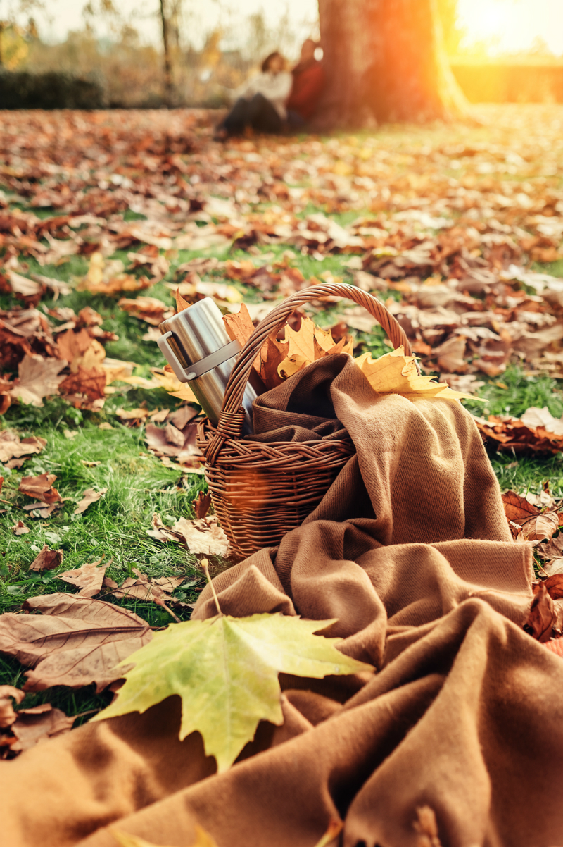 Inspired By The Season - Fun Ways To Enjoy The Best Things About Fall - Picnic in the Park