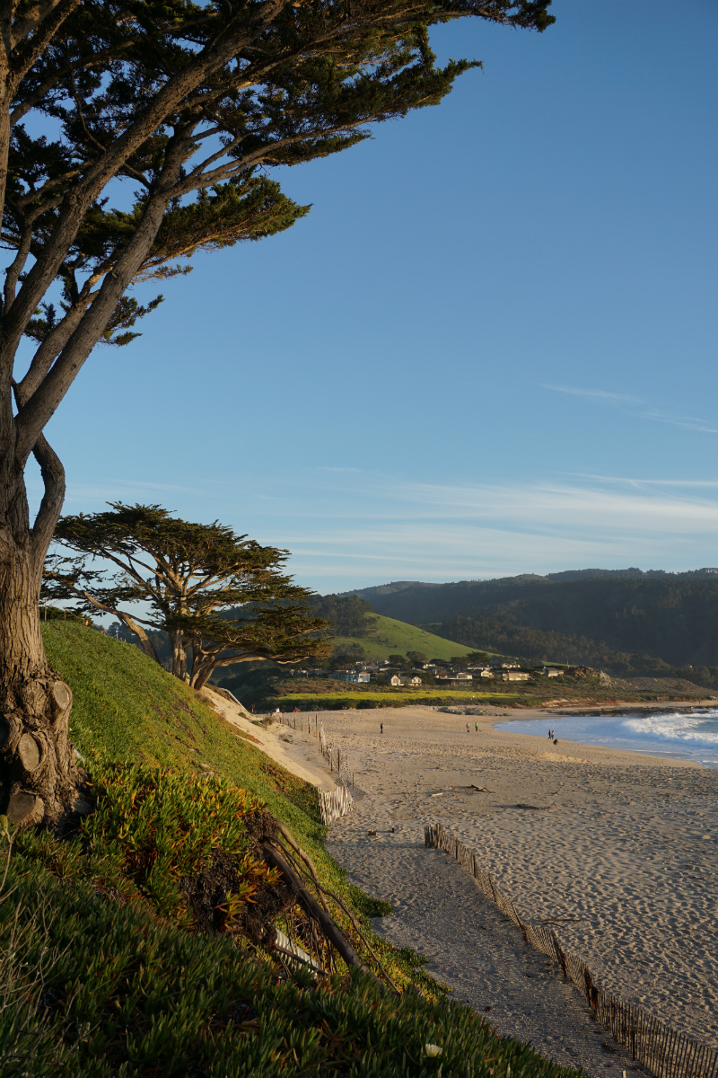 3 Inspiring Places to View The Pacific Ocean on The Monterey Peninsula - Carmel River State Beach