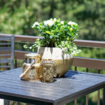 Gardening Guide: How To Quickly & Easily Update Your Patio