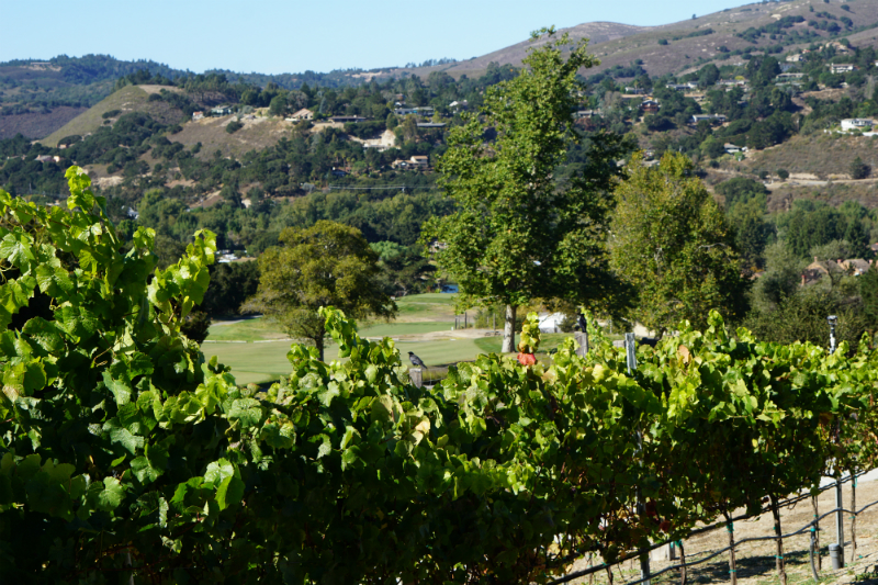 Places to Visit for Thanksgiving - Carmel Valley Ranch