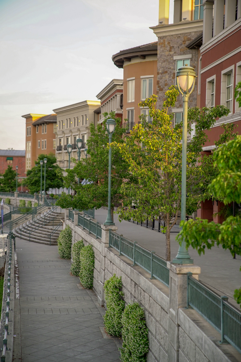 The Dog Lover's Guide to Visiting Downtown Napa