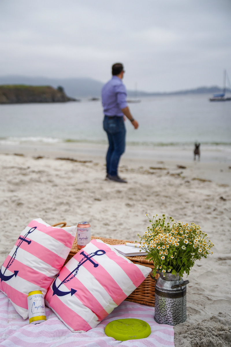Entertaining Guide: How To Make Your Beach Picnic More Joyful with Cupcake Vineyards